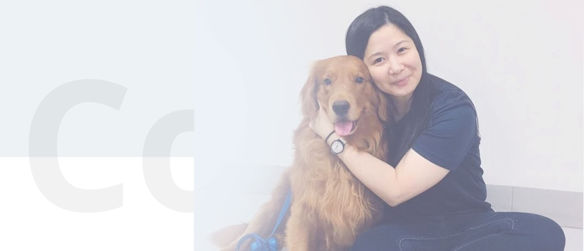 Our certified Human-Animal Teams conduct Animal-Assisted Activities with our Therapy Animals