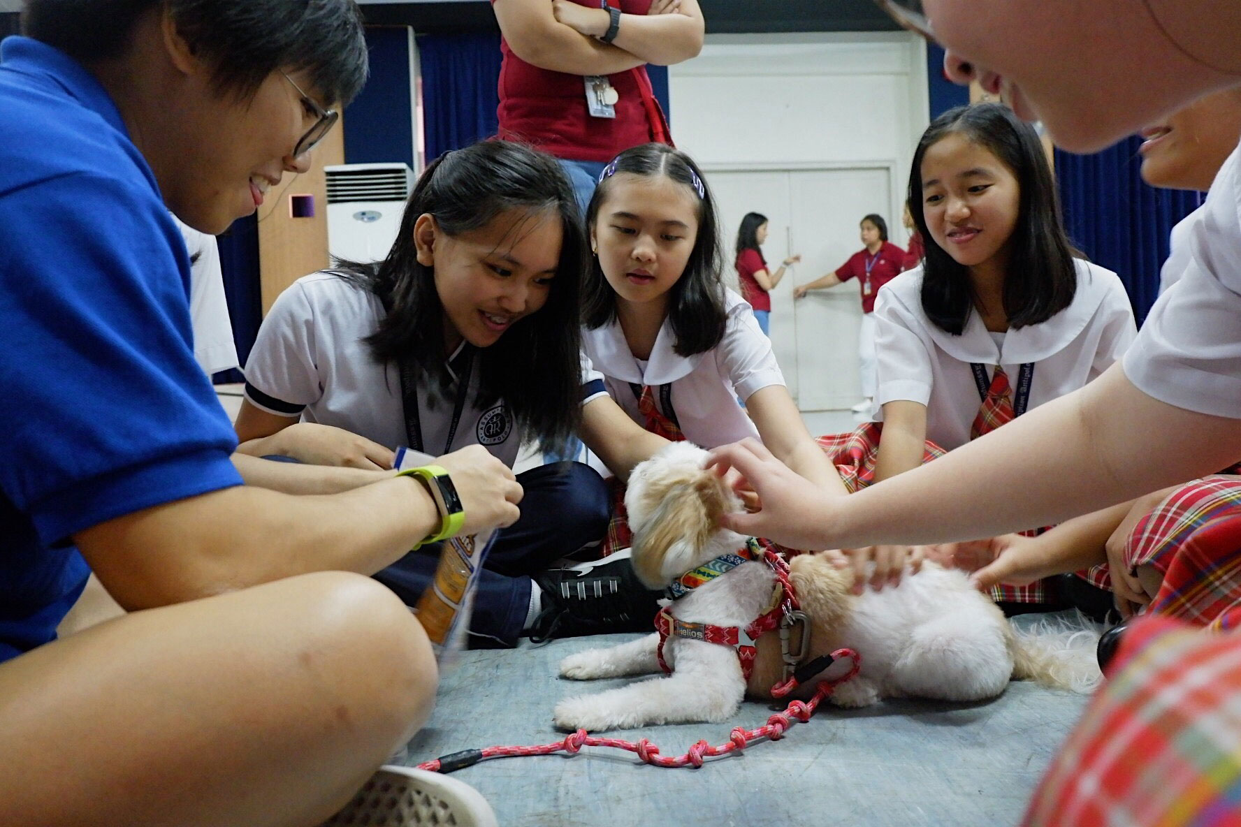 Animal-Assisted Activity Peppy by Luisa Elago