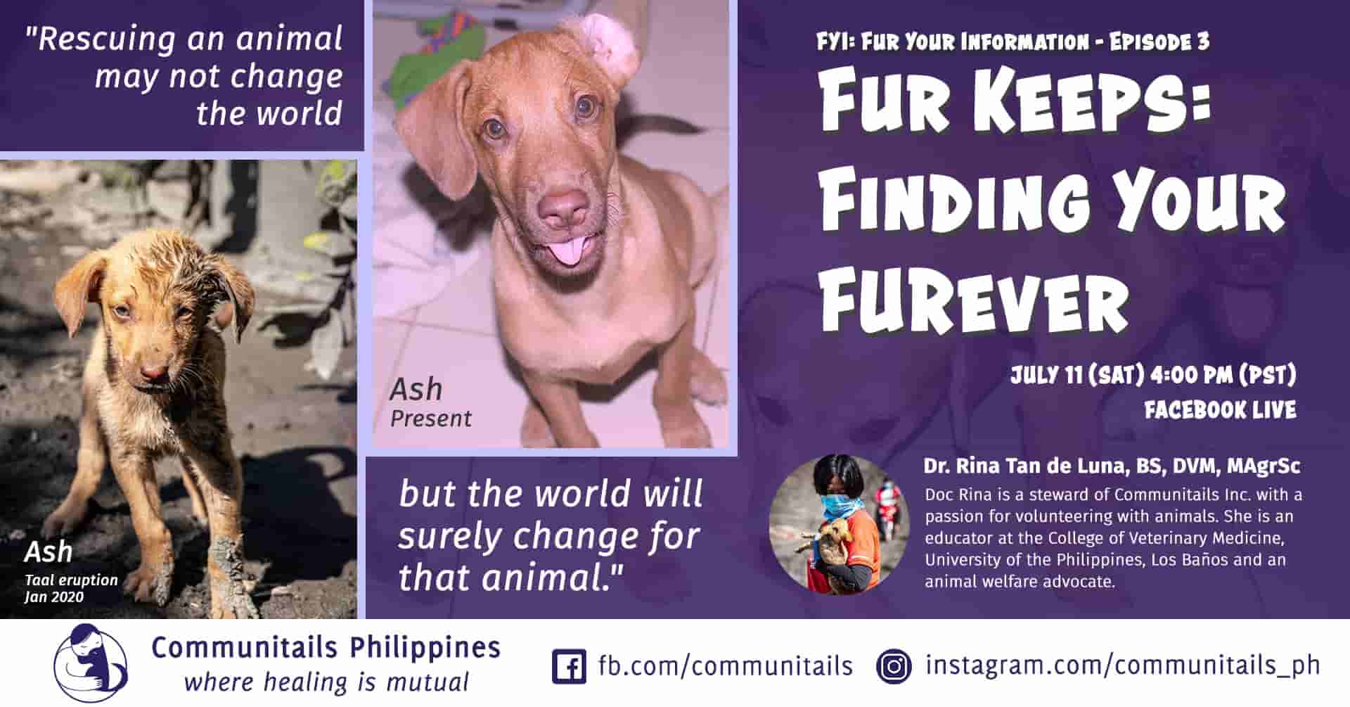 Fur Your Information (FYI) Episode 3: Finding Your FURever