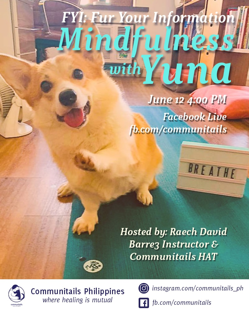 Fur Your Information (FYI) Episode 1: Mindfulness with Yuna